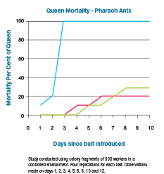 Pharaoh Ant, queen mortality graph